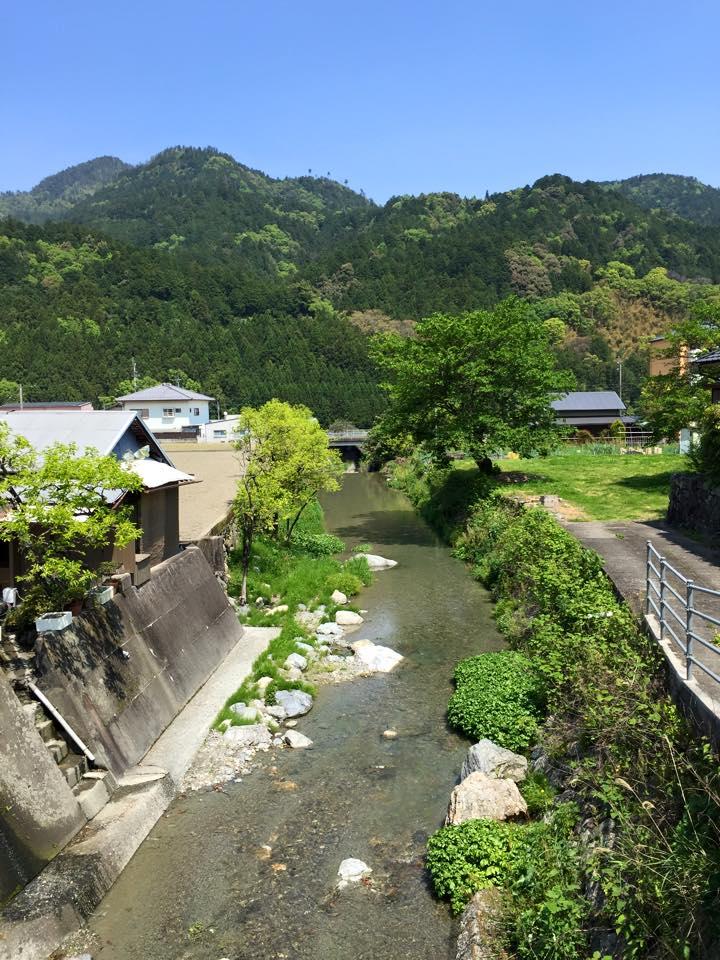 神山の自然